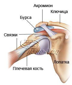 Зарядка при остеохондрозе позвоночника видео доктора бутримова