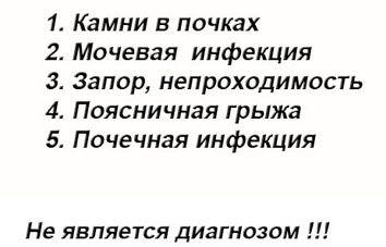 bol-pohozhaya-na-shvatki-vnizu-zhivota
